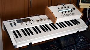 20200301b_mutableinstrumentsambikaonwald